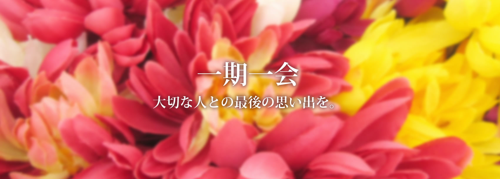 シンプルなお葬式から大型葬まで京都の伸和社へお任せください。伸和社の小さなお葬式は12万円から
